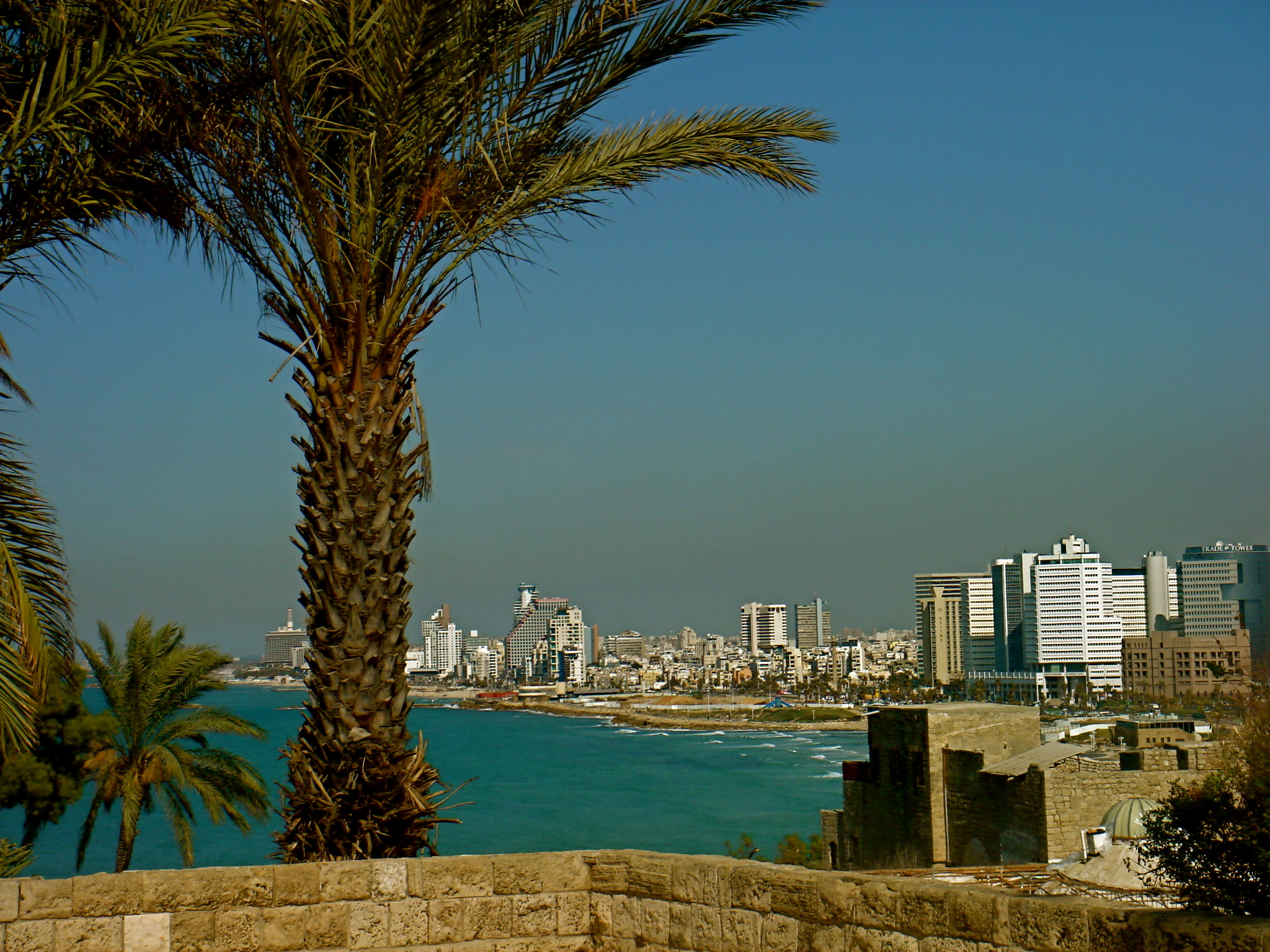 How Tel Aviv Became a Tech Hub, Almost Overnight