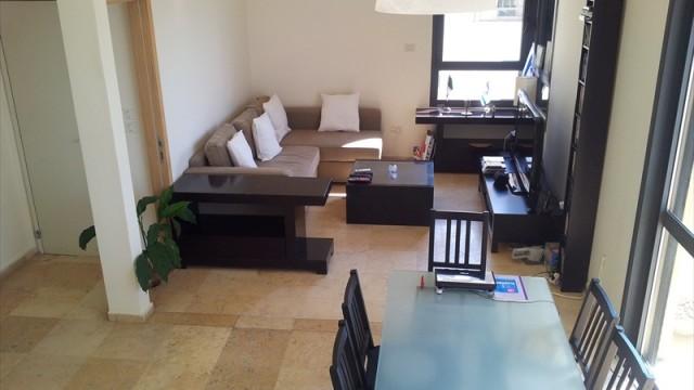 Duplex-Penthouse (2)